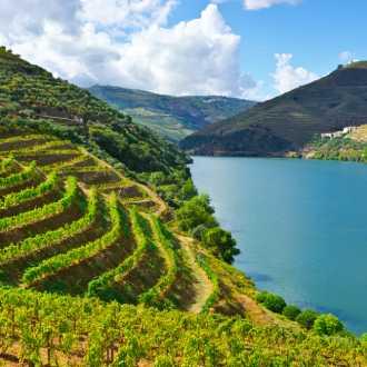 Wijnstreek Douro, Portugal