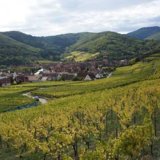 Franse wijnstreek