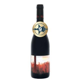 Balsamino Marche rosso Vini Venturi | De Marken | 2015 | Complex, krachtig en vol