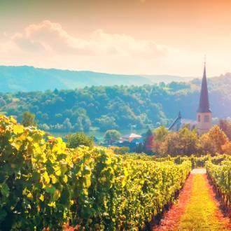 Moezel wijnstreek, Duitsland