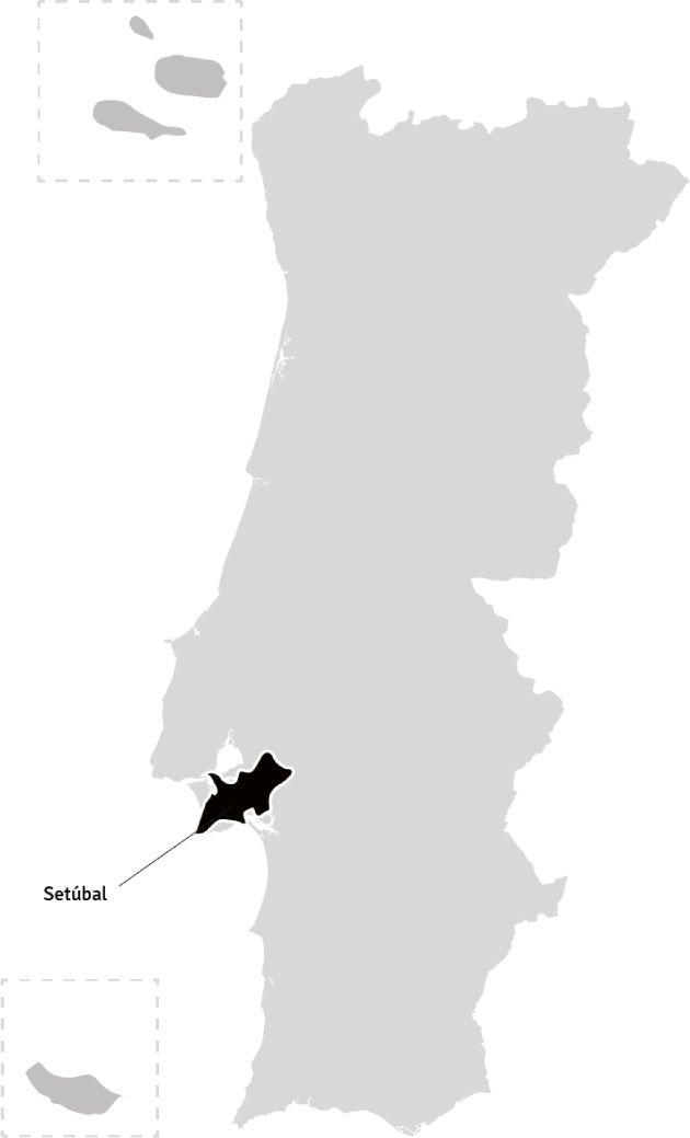Kaart van Portugal – wijnstreek Península de Setúbal | Bekijk het beste aanbod van Península de Setúbal wijnen samengebracht in één online winkel op Vindmijnwijn.nl