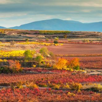 Rioja wijnstreek, Spanje
