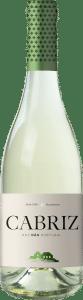 Opta Branco | Portugal | gemaakt van de druif: Bical, Encruzado, Malvasia