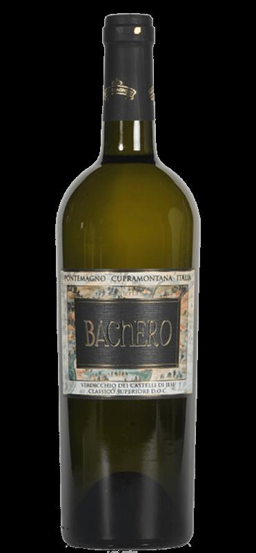 Bachero Verdicchio dei Castelli di Jesi classico superiore doc | Italië | gemaakt van de druif: Verdicchio