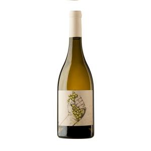 Calvente Xate-O | Spanje | gemaakt van de druif: Viognier
