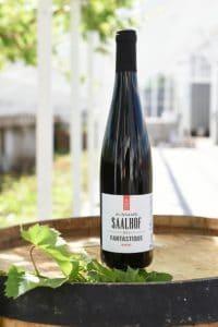 Saalhof Rondo | Nederland | gemaakt van de druif: rondo