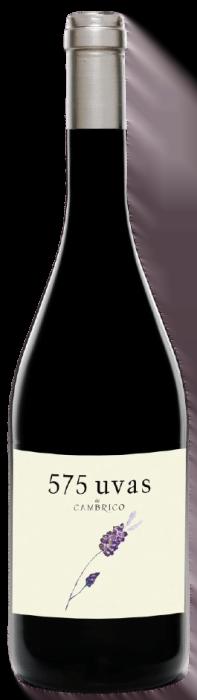 Bodegas Antidoto   Spanje   gemaakt van de druif: Garnacha, Rufete, Tempranillo