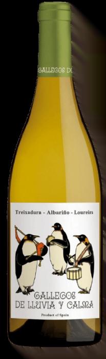 Gallegos de Lluvia y Calma Treixadura Galicie | Spanje | gemaakt van de druif: Albariño, Loureiro, treixadura