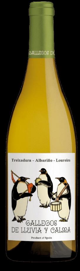 Gallegos de Lluvia y Calma Treixadura Galicie   Spanje   gemaakt van de druif: Albariño, Loureiro, treixadura