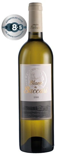 Domaine de Baccari – Blanc de Baccari | Marokko | gemaakt van de druif: Vermentino