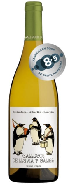 Gallegos de Lluvia y Calma treixadura Ribeiro bio | Spanje | gemaakt van de druif: Albariño, Loureiro, treixadura